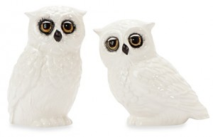 edie-rose-by-rachel-bilson-hydrangea-owl-salt-and-pepper-shakers-e1471321777779-300x193